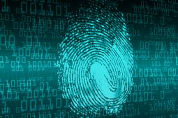 Fingerprint and digital numbers